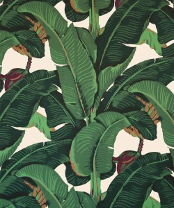 Pictured: Martinique by Kate Spade (wall paper)